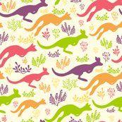 jumping kangaroos ~ oksancia