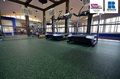 Neoflex Reco Series Rubber Fitness Flooring @ Private Olympic Training Facility, Dubai, UAE