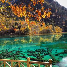 Five flower lake China Places To Travel, Places To See, Breath Of Fresh Air, China Travel, Heaven On Earth, Paddle Boarding, Heritage Site, Waterfalls, National Parks