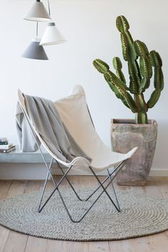 It doesn't take much to create a really gorgeous chill-out/reading corner. Here, subtle shades of white and grey create a calm spot, with a feature cactus and pendant lamp doing all the work.