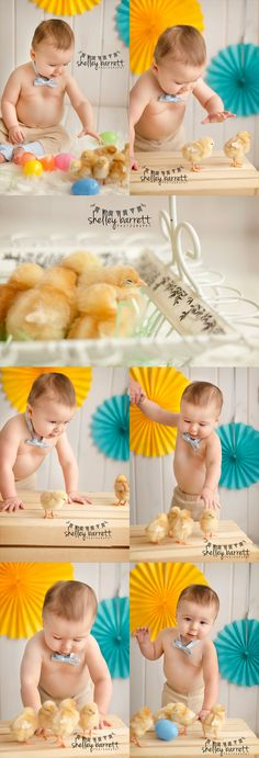 Shirtless Baby + Bowtie + Baby Chicks = ADORABLE! || Shelley Barrett Photography || Birmingham, Chelsea, Shelby County, Alabama || Family, Children, Child, Baby, Infant, Kid Photographer || Easter Mini Sessions || Baby Chicks, Animals, Chickens, Holiday Photo