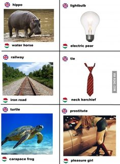 English to Hungarian direct translation - and it really is like that