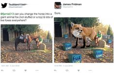 """23 Troll-y Photoshop Gems From The Infamous James Fridman - Funny memes that """"GET IT"""" and want you to too. Get the latest funniest memes and keep up what is going on in the meme-o-sphere. Funny Photoshop Requests, Funny Photoshop Fails, Photoshop Help, Photoshop Actions, Creative Photoshop, Photomontage, Dankest Memes, Funny Memes, Hilarious Quotes"""