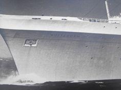 Original-16x20-Holland-America-SS-Rotterdam-B-amp-W-Photo-Very-Rare