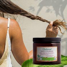 Rewards Program   Referrals Program   Just Nutritive Shampoo For Gray Hair, Hair Loss Shampoo, Facial Lotion, Hair Kit, Regrow Hair, Facial Cream, It Goes On, Hair Conditioner, Healthy Hair