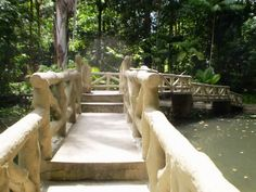 Jardim Botânico Bosque Rodrigues Alves
