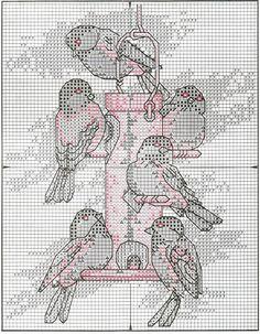 Chickadees ....3