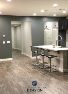 Dark Basement Room Best Paint Colours Sherwin Williams Grizzle Gray Agreeable Gray Tile Lo In 2020 Agreeable Gray Gray Paint Colors Sherwin Williams Grey Wall Color