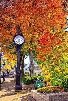 Bar Harbor, Maine (by Kay Gaensler)