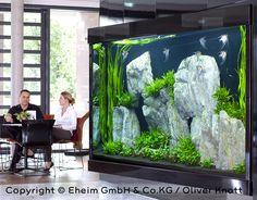 Genius fish tank