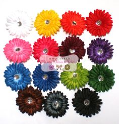 Wholesale Lot 24 New 4 inch Gerbera Daisy by wholesaleflowers, $9.00
