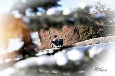 Kate & Jordan Regina's Wascana park Engagement session Edgy Photography, Family Photography, Wedding Photography, Engagement Session, Engagement Photos, Wedding Photos, Park, Extended Family Photography, Wedding Shot