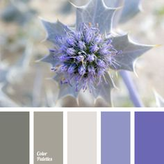 If it happens so that the most important day in your life - your wedding - will be held in winter, this palette will look very nice combined with the white.