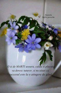 Maria Maria - Google+ Religion, Tuesday, Google, Quotes, Quotations, Religious Education, Quote, Manager Quotes, Qoutes