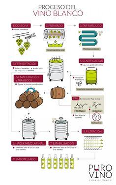 ¿Conoces el proceso de elaboración del vino? ¿Y las diferencias ...