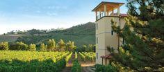 Alberto Quacquarini. http://www.quacquarini.it - For the event ''Appassimenti Aperti 2013'' we visit this winery ...........excellent !!!