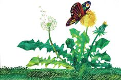 'The Lamb and the Butterfly Character Butterfly Flower' by Eric Carle Painting Print on Wrapped Canvas