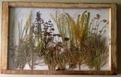 Use an old window to display dried flowers for simple, quick decorating idea.