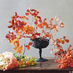 could have just stopped right there. Ikebana Arrangements, Floral Arrangements, Flower Arrangement, Fall Flowers, Love Flowers, Floral Style, Floral Design, Flower Graphic, Garden Styles