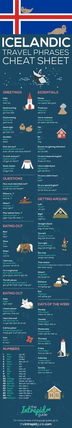 Common Icelandic Travel Phrases Infographic