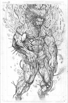 Lo res of MY Weapon X pencils. Kinda intimidating shot as it was supposed to invoke the weapon x story by Barry Windsor Smith. I loved his illustrative . Weapon X Arte Dc Comics, Marvel Comics Art, Marvel Comic Universe, Comic Book Characters, Marvel Characters, Comic Books Art, Marvel Wolverine, Western Comics, Anime Wolf