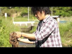 VIDEO: Processing of Wisteria bark into fiber in Japan  #weaving #wisteria #japan 京都 丹後 藤布
