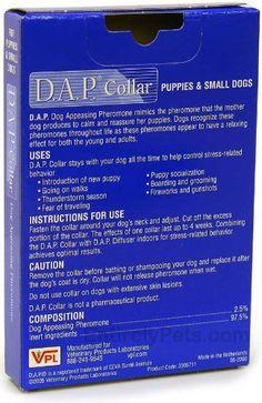Puppy supplies near me
