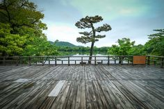 daikakuji temple & bamboo forest - arashiyama kyôto - japan impressions photos
