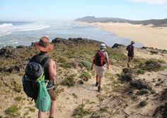 Hiking in Eastern Cape, South Africa: The Eastern Cape and Wild Coast is nature at its finest.   In the north, rivers leap into the sea over massive cliffs. Further south rivers empty into the Indian Ocean through floodplains. Sandy bays and long stretches of beaches characterise these rivers, from the Kei to Mthatha and Mzimvuba.   Rocky shores, estuaries, bays and headlands. Crashing waves onto the shoreline. Beautiful rivers. In short – a hiker's paradise!