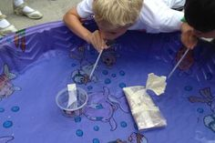 First Grade Science Archives - Playdough To Plato