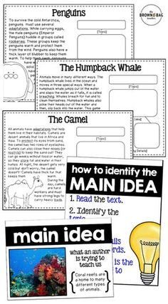 Main Idea Reading Passages, Anchor Charts, and Graphic Organizers! Perfect for 1st and 2nd graders.