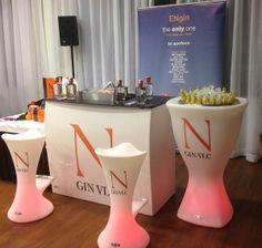 Acompañando en el evento a N GIN VLC.