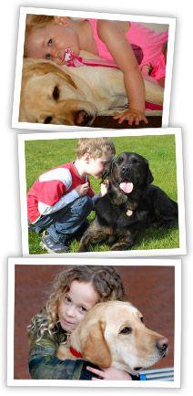 Welkom bij PAWS! Heeft u een kind met een autisme spectrum stoornis (ASS)? Wij trainen ook huishonden om kinderen met autisme te begeleiden. Kijk voor meer informatie op www.paws.nl.