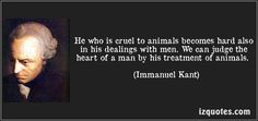 He who is cruel to animals becomes hard also in his dealings with men. We can judge the heart of a man by his treatment of animals. (Immanuel Kant) #quotes #quote #quotations