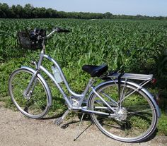 My Electra Townie Euro 8i, and a cornfield.