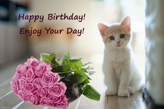 Happy Birthday with kitten and flowers (pink-red roses)- Happy Birthday pictures, images, pics. Happy Birthday Kitten, Happy Birthday Little Girl, Happy Birthday Rose, Birthday Wishes Flowers, Happy Birthday Cupcakes, Happy Birthday Wishes Cards, Birthday Roses, Happy Birthday Candles, Happy Birthday Pictures