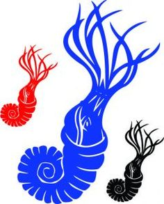 ammonite-dinosaur-decal - great decal for kids room. http://www.vinyl-decals.com/ammonite_dinosaur_decal-VA1-135-01.php