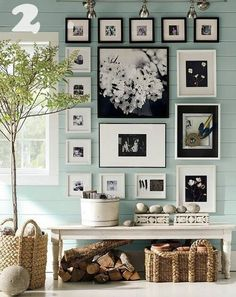 Black and white photos and frames on a colored wall and in an organic setting