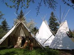 little camp