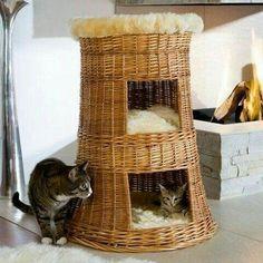 Cat Noises, Diy Cat Toys, Cat Cave, Paper Weaving, Cat Sweaters, Cat Room, Cat Accessories, Paper Basket, Cat Crafts