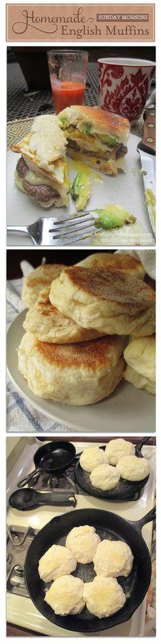 biscuits memaw s buttermilk biscuits buttermilk herb biscuits memaw ...