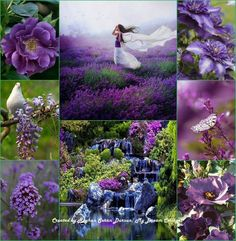 ' Purple & Green '' by Reyhan Seran Dursun