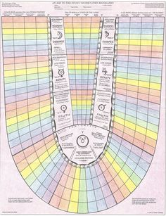 Life Chart from _The Human Life_ by George and Gisela O'Neil. An Anthroposophical life view. http://www.goodreads.com/book/show/5000794-the-human-life