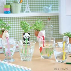 4Pieces/Set Ceramic Creature Mini Backpack Plant Pot Chuppon Self Watering Animal Planter- Pig+Cat+Rabbit+Panda Geekfactory http://smile.amazon.com/dp/B00XN3N94U/ref=cm_sw_r_pi_dp_vdZwwb1JGJXND