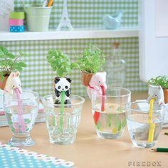 4Pieces/Set Ceramic Creature Mini Backpack Plant Pot Chuppon Self Watering Animal Planter- Pig+Cat+Rabbit+Panda Geekfactory http://www.amazon.com/dp/B00XN3N94U/ref=cm_sw_r_pi_dp_RczJvb07H0HBK