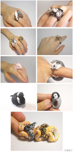 http://www.duitang.com/category/?cat=diy  Animal rings