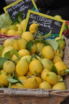 ~ baskets of lemons at a French market ~
