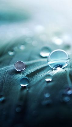 I love water droplet photography, it is so beautiful :)