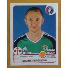 Football Soccer Sticker Panini UEFA Euro 2016 #334 N. Ireland
