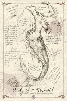 This is an inspiration collection of mermaid photos, paintings and drawings that I have been...